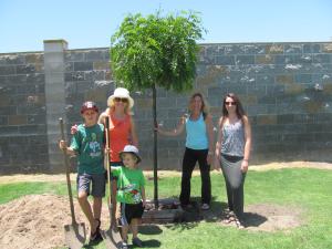 Earth Day Golden Medallion Tree